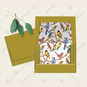 پاکت با طرح پرندههای رنگارنگ